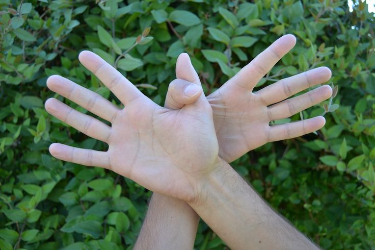 Garuda Mudra Mudras: Garuda mudra  El Garuda Mudra activa el flujo sanguíneo y la circulación. También ayuda a aliviar el cansancio