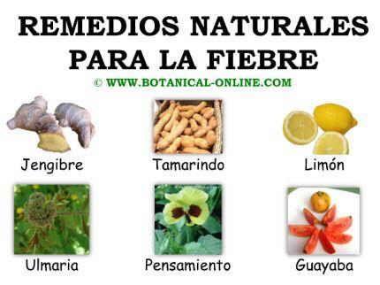 Remedios naturales para la fiebre http://mejoresremediosnaturales.blogspot.com/