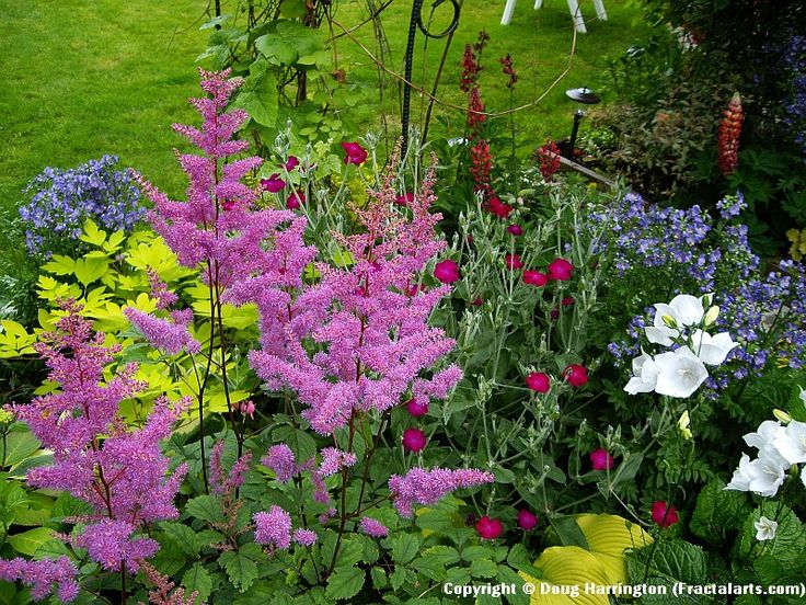 20 Best Images About Northwest Gardens On Pinterest