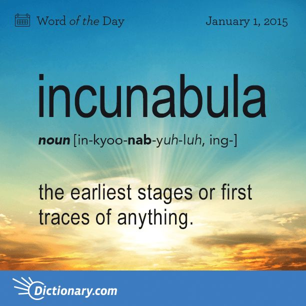 Incunabula ~ The earliest stages or first traces of anything.
