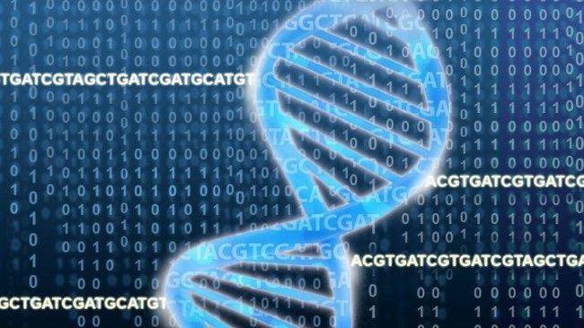 Svenska forskare presenterar idag en unik genetisk kartläggning av de 17 vanligaste cancersjukdomarna.  Referenser och inskjutna förklaringar - kommatecken.