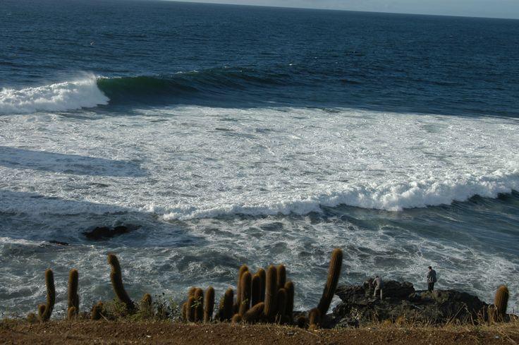 Punta de Lobos, Pichilemu. VI Región
