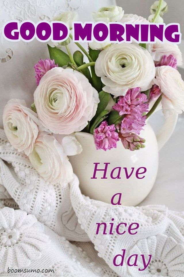 Good Morning Quotes Have a Nice Day Blumenarrangement