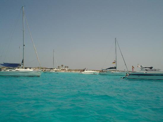 bella, ma troppo congestionata - Recensioni su Playa de ses Illetes, Formentera - TripAdvisor