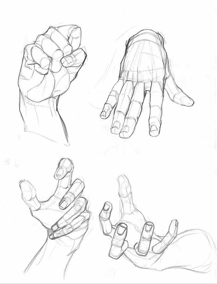 The 98 best hands images on Pinterest | Drawing reference, Sketches ...