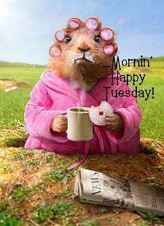 Mornin Happy Tuesday