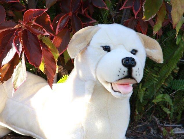 Bocchetta Plush Toys Beau The Labrador Stuffed Dog Toy Plush