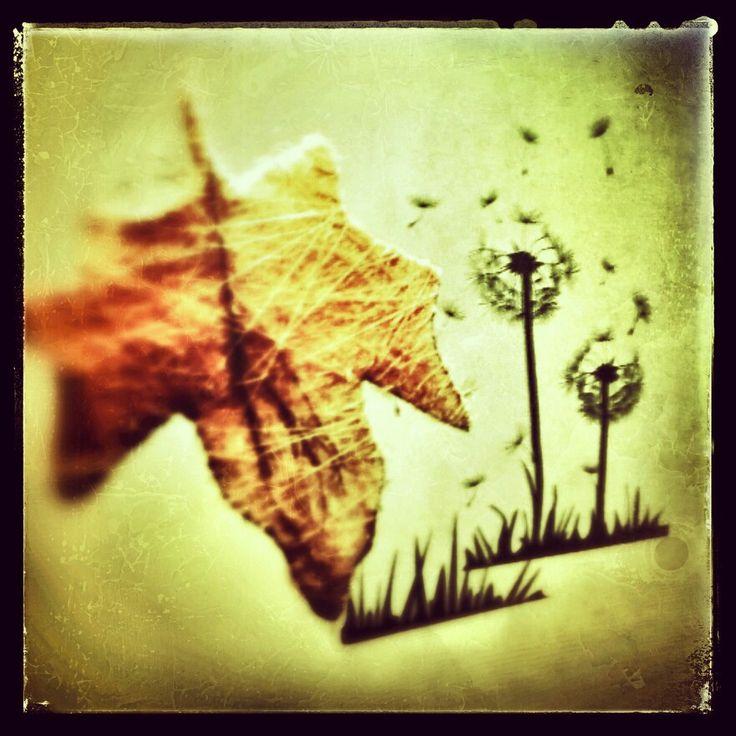 Instant autumn