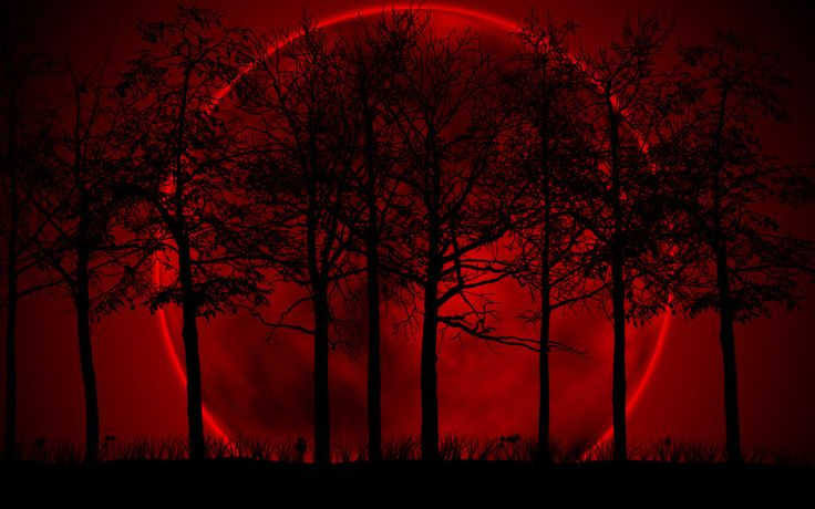 red moon pictures 2011 | Until is Beginning Now - A CROOKED PATH