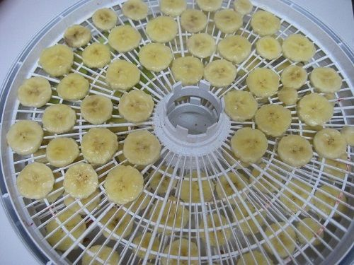 How to Dehydrate Fruit - Grapes, Bananas, Blueberries, Strawberries, Peaches, MangosDon't Waste the Crumbs!