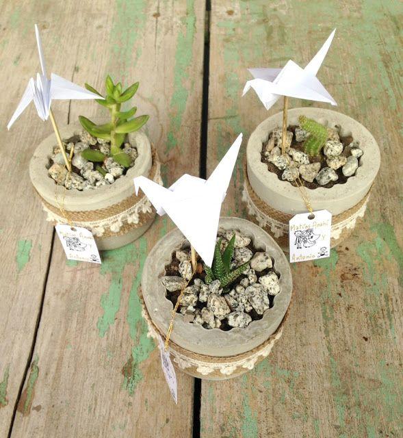 Macetas de cemento con suculentas y cactus - Concrete pots - Mamy a la obra