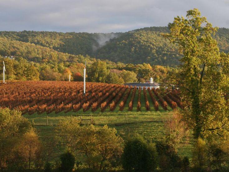Virginia Wine celebrates 30th annual Virginia Wine Month