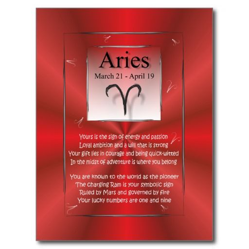 ==>Discount          	Aries the Ram Card Birthday Dates Mar 21 - Apr 19 Postcards           	Aries the Ram Card Birthday Dates Mar 21 - Apr 19 Postcards online after you search a lot for where to buyDeals          	Aries the Ram Card Birthday Dates Mar 21 - Apr 19 Postcards Review on the This ...Cleck Hot Deals >>> http://www.zazzle.com/aries_the_ram_card_birthday_dates_mar_21_apr_19_postcard-239780426412573284?rf=238627982471231924&zbar=1&tc=terrest