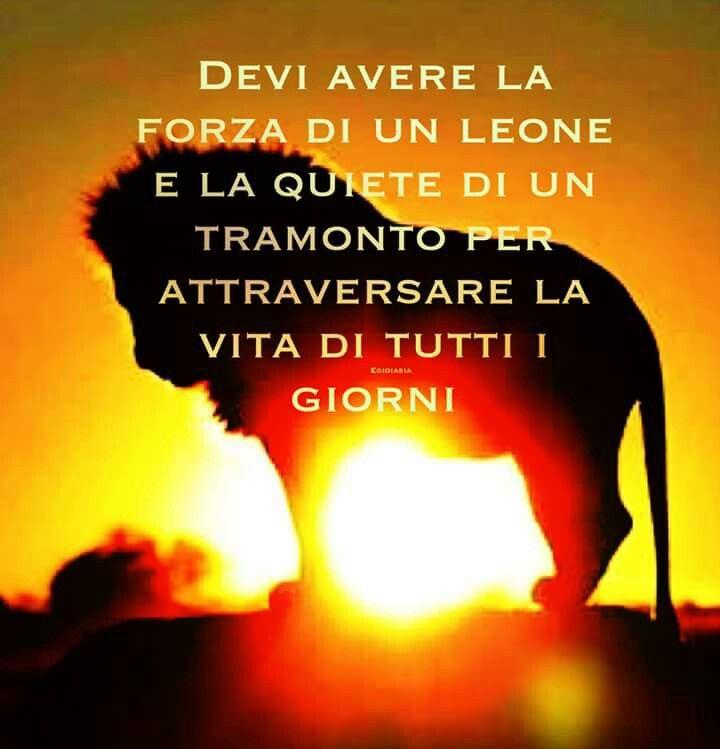 Frasi Sul Tramonto Facebook.Frasi Vita Terzani