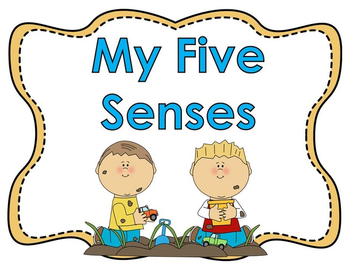 90 best images about Five Senses on Pinterest   Posters ...