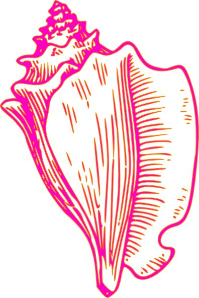 Pink Yellow Conch Shell 2 Clip Art at Clker.com - vector clip art ...