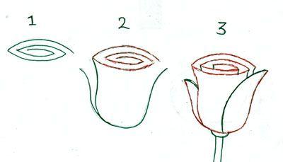 tulp tekenen in stappen