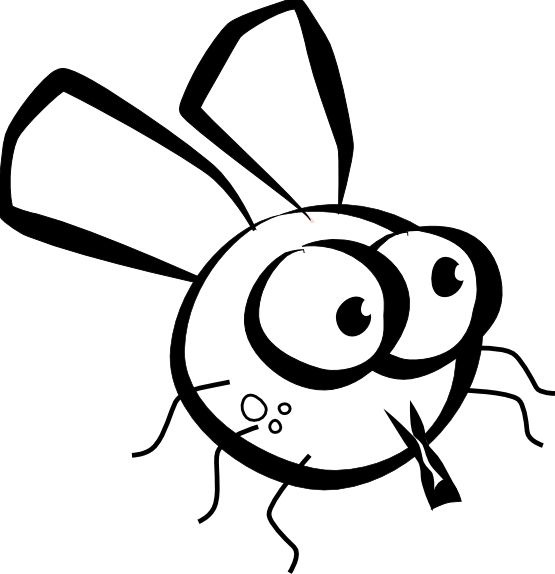 how to draw a cute fly