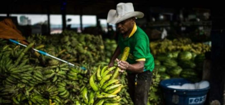 Brazil Inflation Hits 13-Year High Amid Political Crisis - http://financialages.com/news/brazil-inflation-hits-13-year-high-amid-political-crisis/