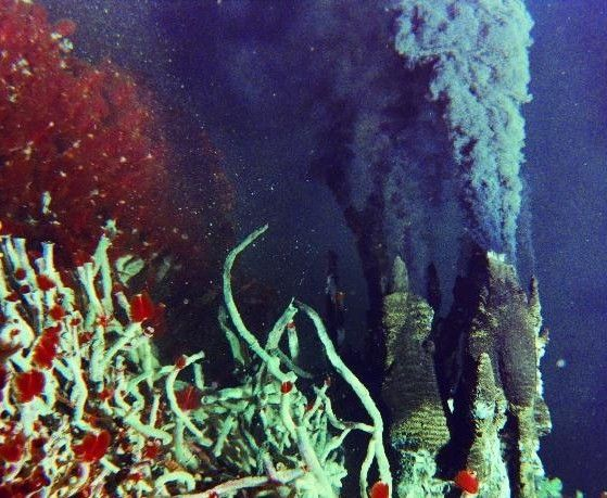 A Black Smoker Is A Type Of Hydrothermal Vent Deep In The
