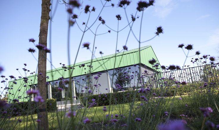 Van tuincentrum tot tuinaanleg | Abrahams Hoveniers