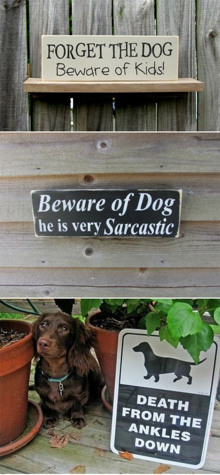 "The ""beware of dog"" sign has been used since the days of the Roman empire, which was a super long time ago (my high school Ancient History teacher would cringe if he saw this). So it's no surprise that it's gotten a bit stale. Here are some creative ways to let the world know that a dog lives in your house."