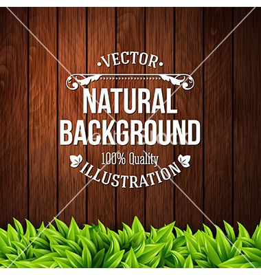 Natural background with wooden planks and leaves vector 2286635 - by alevtina on VectorStock®