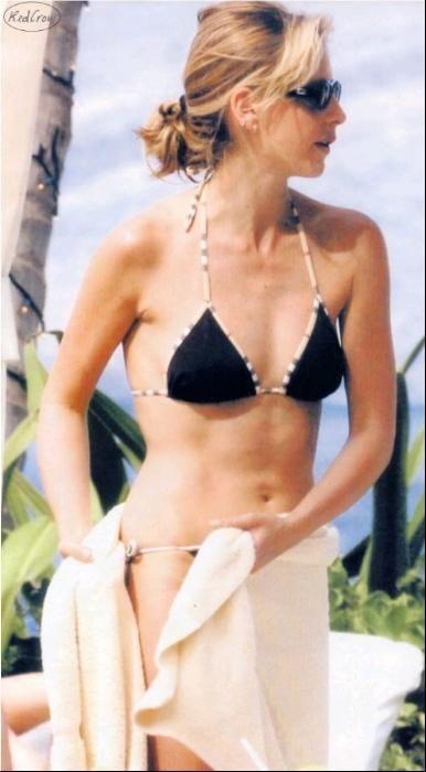 sarah-gellar-nude-fake-porn-bikini-sexinude-photos