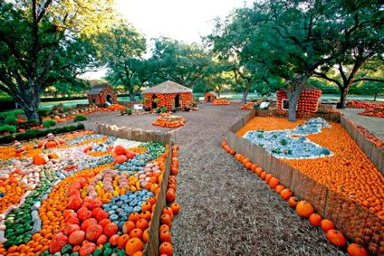 Cinderella Pumpkin Village at the Dallas Arboretum