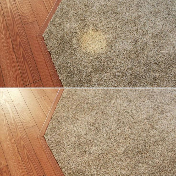 Pin on Stuff we do to carpets like yours