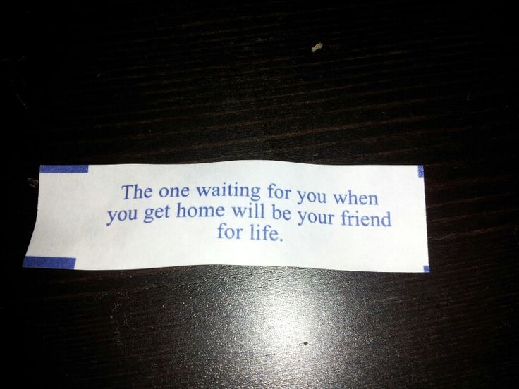 Waiting For The One You Love Quotes: The 25+ Best Fortune Cookie Quotes Ideas On Pinterest