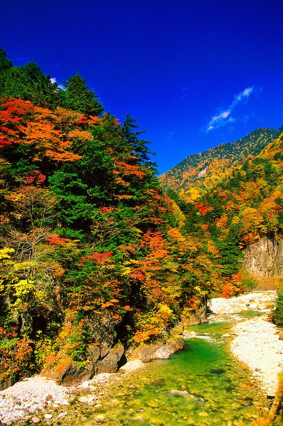 Autumn color, Kamikochi, the Japan Alps, Nagano, Japan