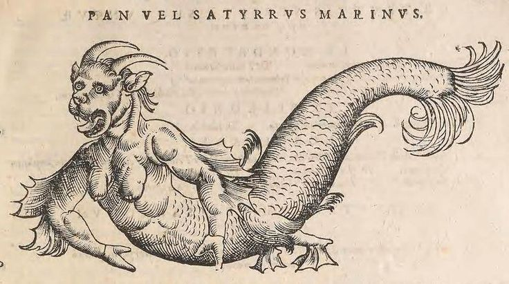 "A ""Sea Devil"" as depicted by Conrad Gessner in Historia Animalium, 2nd ed, 1604. (Smithsonian Biodiversity Heritage Library) ~ETS"