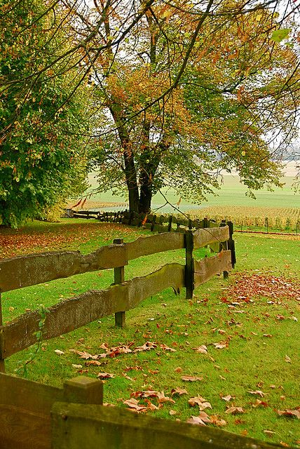 The fence ~ Country Living