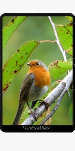 Case for Amazon Kindle Fire - MM - Robin redbreast - by PINO
