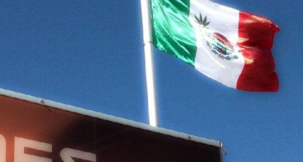 La bandiera messicana con la foglia di marijuana che sventola al GP http://tuttacronaca.wordpress.com/2013/11/17/la-bandiera-messicana-con-la-foglia-di-marijuana-che-sventola-al-gp/