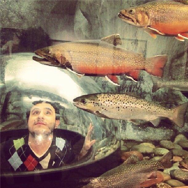 L.L.Bean Riverbed aquarium - Freeport, Maine photo via Instagram @Xavi Tapia Carpinelli