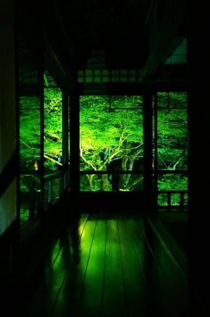 京都 瑠璃光院 Rurikouin, Kyoto, Japan #Kyoto #Green #緑 by lilly