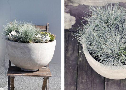 Planter du sukkulenter sammen med prydgress får du en lettstelt og vakker krukke.