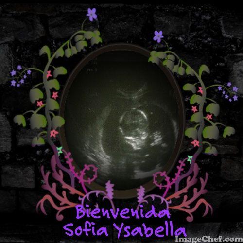 Eco sofia Ysabella
