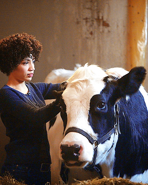 One Fringe still per episode | 1.12 The No-Brainer