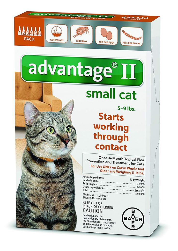 Advantage 12 month orange for cats under 9lbs thanks for