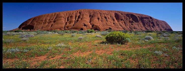 Ayers rock at noon. Uluru-Kata Tjuta National Park, Northern Territories, Australia (Panoramic).