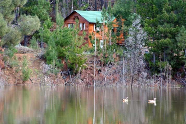 Protea Farm - Waterblommetjie Cottage