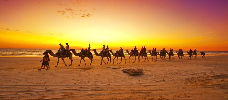 Western Wonders: We Chat with Western Australia Travel Guru Johanna Castro: Sunsets Exploring, Travel Blog, Australia Travel, Westerns Wonder, Camels, Bülow Australia, Photo, Westerns Australia, Travel Guru