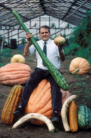 Giant vegetables: Bernard Lavery and some of his giant vegetables in 1995