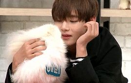 bts taehyung my pet clinic gif - Google Search