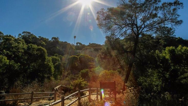 Looking to get outside over the holidays?Hidden San Diego offers some of the most unique hiking experiences in San Diego County.