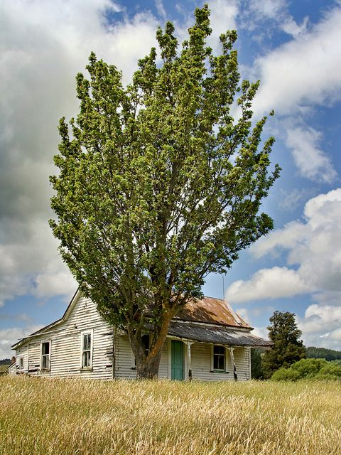 Old house, Rangiwaea Junction, Ruapehu District, New Zealand | Flickr - Photo Sharing!