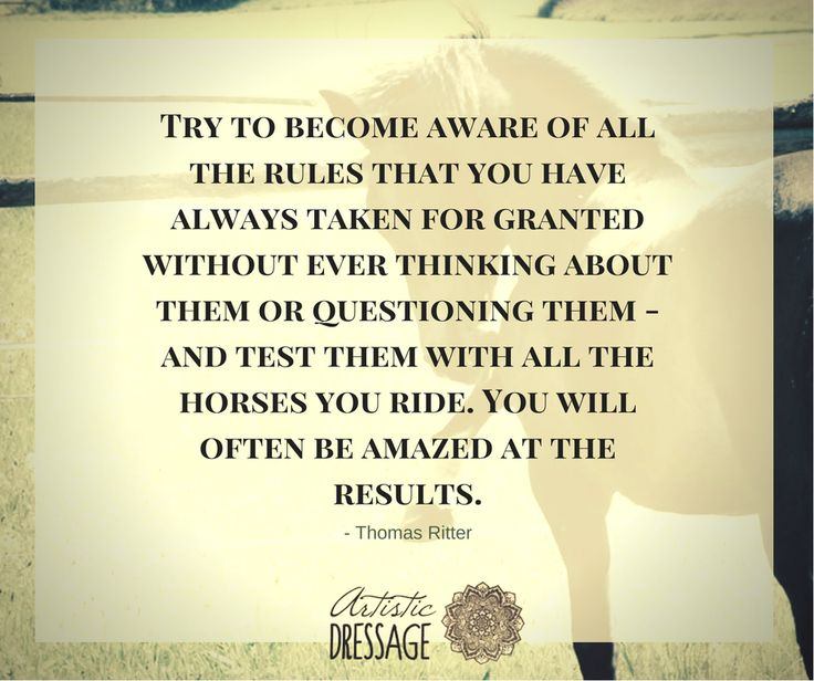 """Try to become aware of all the rules that you have always taken for granted without ever thinking about them or questioning them - and test them with all the horses you ride. You will often be amazed at the results."" - Thomas Ritter artisticdressage.com"